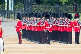 Trooping the Colour 2016. Horse Guards Parade, Westminster, London SW1A, London, United Kingdom, on 11 June 2016 at 10:44, image #218