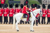 Trooping the Colour 2016. Horse Guards Parade, Westminster, London SW1A, London, United Kingdom, on 11 June 2016 at 10:45, image #219