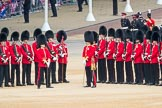 Trooping the Colour 2016. Horse Guards Parade, Westminster, London SW1A, London, United Kingdom, on 11 June 2016 at 10:47, image #226
