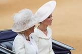 Trooping the Colour 2016. Horse Guards Parade, Westminster, London SW1A, London, United Kingdom, on 11 June 2016 at 10:52, image #260