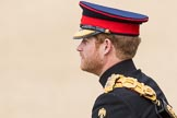 Trooping the Colour 2016. Horse Guards Parade, Westminster, London SW1A, London, United Kingdom, on 11 June 2016 at 10:52, image #263