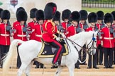 Trooping the Colour 2016. Horse Guards Parade, Westminster, London SW1A, London, United Kingdom, on 11 June 2016 at 10:53, image #278