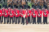 Trooping the Colour 2016. Horse Guards Parade, Westminster, London SW1A, London, United Kingdom, on 11 June 2016 at 10:54, image #283