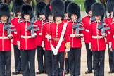 Trooping the Colour 2016. Horse Guards Parade, Westminster, London SW1A, London, United Kingdom, on 11 June 2016 at 10:55, image #284