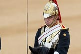 Trooping the Colour 2016. Horse Guards Parade, Westminster, London SW1A, London, United Kingdom, on 11 June 2016 at 10:57, image #298