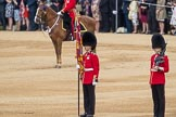 Trooping the Colour 2016. Horse Guards Parade, Westminster, London SW1A, London, United Kingdom, on 11 June 2016 at 10:58, image #310