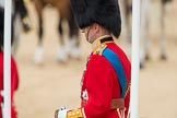 Trooping the Colour 2016. Horse Guards Parade, Westminster, London SW1A, London, United Kingdom, on 11 June 2016 at 11:01, image #339