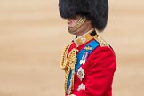 Trooping the Colour 2016. Horse Guards Parade, Westminster, London SW1A, London, United Kingdom, on 11 June 2016 at 11:01, image #348