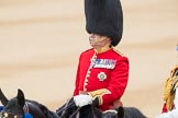 Trooping the Colour 2016. Horse Guards Parade, Westminster, London SW1A, London, United Kingdom, on 11 June 2016 at 11:02, image #352