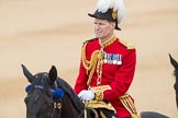 Trooping the Colour 2016. Horse Guards Parade, Westminster, London SW1A, London, United Kingdom, on 11 June 2016 at 11:02, image #355