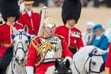 Trooping the Colour 2016. Horse Guards Parade, Westminster, London SW1A, London, United Kingdom, on 11 June 2016 at 11:02, image #360
