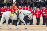 Trooping the Colour 2016. Horse Guards Parade, Westminster, London SW1A, London, United Kingdom, on 11 June 2016 at 11:03, image #376