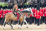 Trooping the Colour 2016. Horse Guards Parade, Westminster, London SW1A, London, United Kingdom, on 11 June 2016 at 11:03, image #377