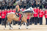 Trooping the Colour 2016. Horse Guards Parade, Westminster, London SW1A, London, United Kingdom, on 11 June 2016 at 11:03, image #378