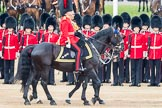 Trooping the Colour 2016. Horse Guards Parade, Westminster, London SW1A, London, United Kingdom, on 11 June 2016 at 11:03, image #379