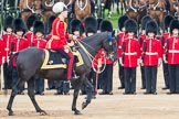 Trooping the Colour 2016. Horse Guards Parade, Westminster, London SW1A, London, United Kingdom, on 11 June 2016 at 11:03, image #380