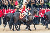 Trooping the Colour 2016. Horse Guards Parade, Westminster, London SW1A, London, United Kingdom, on 11 June 2016 at 11:03, image #381