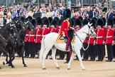 Trooping the Colour 2016. Horse Guards Parade, Westminster, London SW1A, London, United Kingdom, on 11 June 2016 at 11:03, image #383