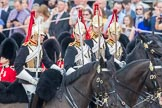 Trooping the Colour 2016. Horse Guards Parade, Westminster, London SW1A, London, United Kingdom, on 11 June 2016 at 11:03, image #385