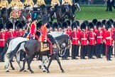 Trooping the Colour 2016. Horse Guards Parade, Westminster, London SW1A, London, United Kingdom, on 11 June 2016 at 11:03, image #386