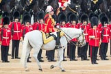 Trooping the Colour 2016. Horse Guards Parade, Westminster, London SW1A, London, United Kingdom, on 11 June 2016 at 11:03, image #387