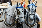 Trooping the Colour 2016. Horse Guards Parade, Westminster, London SW1A, London, United Kingdom, on 11 June 2016 at 11:06, image #405