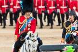 Trooping the Colour 2016. Horse Guards Parade, Westminster, London SW1A, London, United Kingdom, on 11 June 2016 at 11:07, image #407