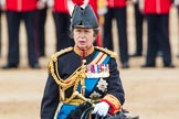 Trooping the Colour 2016. Horse Guards Parade, Westminster, London SW1A, London, United Kingdom, on 11 June 2016 at 11:07, image #408