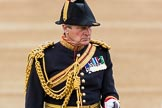 Trooping the Colour 2016. Horse Guards Parade, Westminster, London SW1A, London, United Kingdom, on 11 June 2016 at 11:07, image #419
