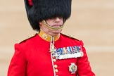 Trooping the Colour 2016. Horse Guards Parade, Westminster, London SW1A, London, United Kingdom, on 11 June 2016 at 11:07, image #421