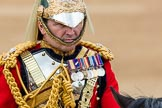 Trooping the Colour 2016. Horse Guards Parade, Westminster, London SW1A, London, United Kingdom, on 11 June 2016 at 11:07, image #426