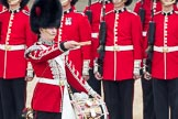 Trooping the Colour 2016. Horse Guards Parade, Westminster, London SW1A, London, United Kingdom, on 11 June 2016 at 11:16, image #466