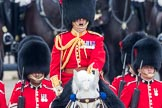 Trooping the Colour 2016. Horse Guards Parade, Westminster, London SW1A, London, United Kingdom, on 11 June 2016 at 11:16, image #468