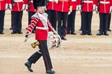 Trooping the Colour 2016. Horse Guards Parade, Westminster, London SW1A, London, United Kingdom, on 11 June 2016 at 11:16, image #469