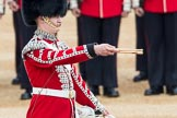Trooping the Colour 2016. Horse Guards Parade, Westminster, London SW1A, London, United Kingdom, on 11 June 2016 at 11:16, image #470