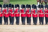 Trooping the Colour 2016. Horse Guards Parade, Westminster, London SW1A, London, United Kingdom, on 11 June 2016 at 11:17, image #473