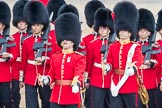 Trooping the Colour 2016. Horse Guards Parade, Westminster, London SW1A, London, United Kingdom, on 11 June 2016 at 11:18, image #477