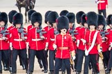 Trooping the Colour 2016. Horse Guards Parade, Westminster, London SW1A, London, United Kingdom, on 11 June 2016 at 11:18, image #478