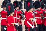 Trooping the Colour 2016. Horse Guards Parade, Westminster, London SW1A, London, United Kingdom, on 11 June 2016 at 11:18, image #480