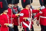 Trooping the Colour 2016. Horse Guards Parade, Westminster, London SW1A, London, United Kingdom, on 11 June 2016 at 11:18, image #482