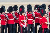 Trooping the Colour 2016. Horse Guards Parade, Westminster, London SW1A, London, United Kingdom, on 11 June 2016 at 11:18, image #483