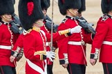 Trooping the Colour 2016. Horse Guards Parade, Westminster, London SW1A, London, United Kingdom, on 11 June 2016 at 11:18, image #484