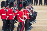 Trooping the Colour 2016. Horse Guards Parade, Westminster, London SW1A, London, United Kingdom, on 11 June 2016 at 11:18, image #486