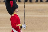 Trooping the Colour 2016. Horse Guards Parade, Westminster, London SW1A, London, United Kingdom, on 11 June 2016 at 11:18, image #488