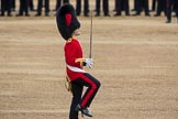 Trooping the Colour 2016. Horse Guards Parade, Westminster, London SW1A, London, United Kingdom, on 11 June 2016 at 11:18, image #489