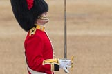 Trooping the Colour 2016. Horse Guards Parade, Westminster, London SW1A, London, United Kingdom, on 11 June 2016 at 11:18, image #490