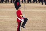 Trooping the Colour 2016. Horse Guards Parade, Westminster, London SW1A, London, United Kingdom, on 11 June 2016 at 11:18, image #491