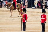 Trooping the Colour 2016. Horse Guards Parade, Westminster, London SW1A, London, United Kingdom, on 11 June 2016 at 11:18, image #492