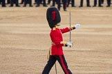 Trooping the Colour 2016. Horse Guards Parade, Westminster, London SW1A, London, United Kingdom, on 11 June 2016 at 11:18, image #493