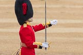 Trooping the Colour 2016. Horse Guards Parade, Westminster, London SW1A, London, United Kingdom, on 11 June 2016 at 11:18, image #494